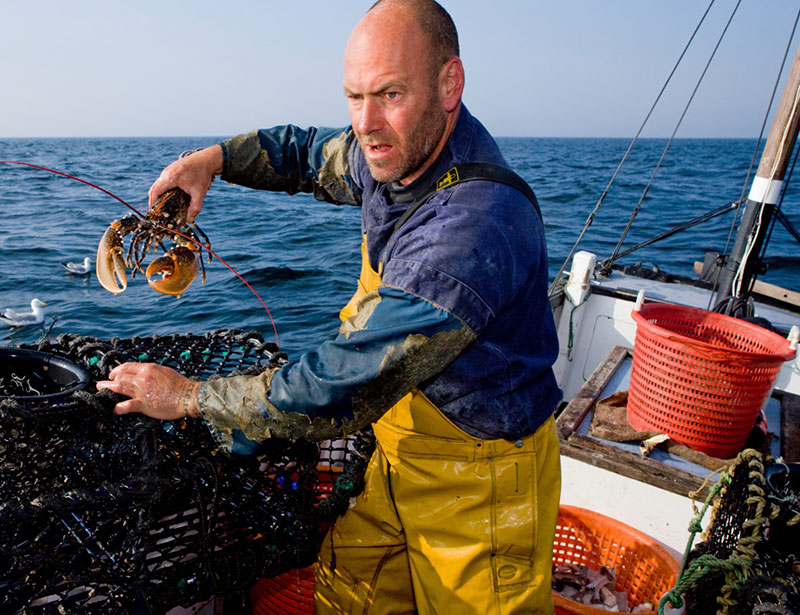 Protected: Marine Stewardship Council